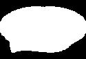 Logo_Savaidis.png