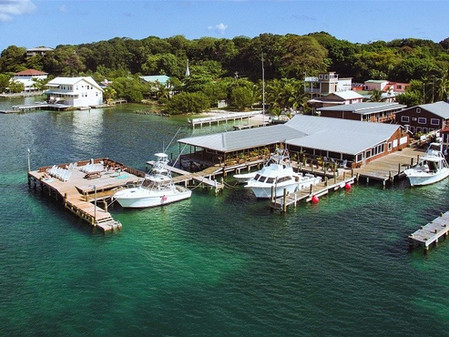 Utila Dive Resort, Bay Islands, Honduras March 20 - 27, 2021