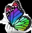 Borboleta colorida.png