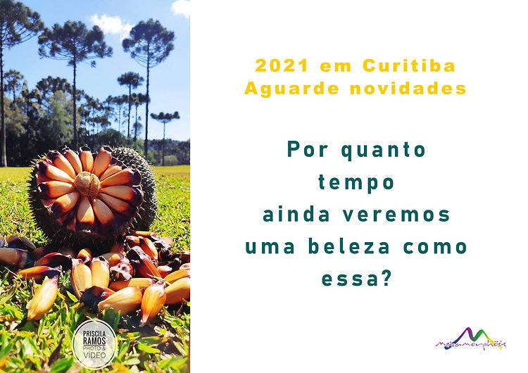Dançando_os_Florais_da_Mata_Atlântica,