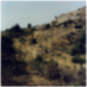 Rudiments_ill_7_75x75.jpg