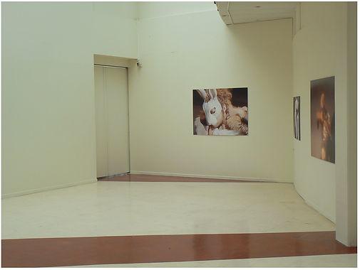 rabbit room 3 - copie 2.jpg