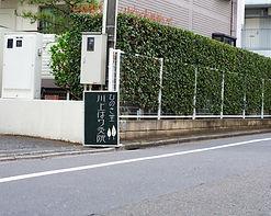 浜田山徒歩3分 ひのき堂川上はり灸院