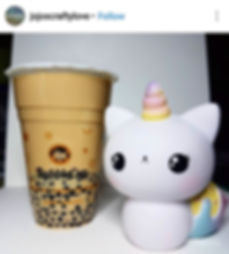 Caticorn Fan of the Month