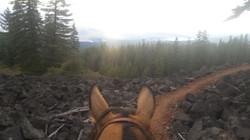 Lava field near Hyatt Lake