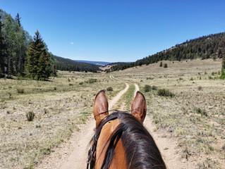 Stewart Creek Trailhead