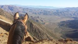The Anza-Borrego desert