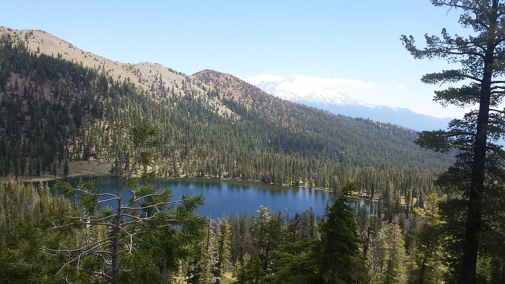 Toad Lake