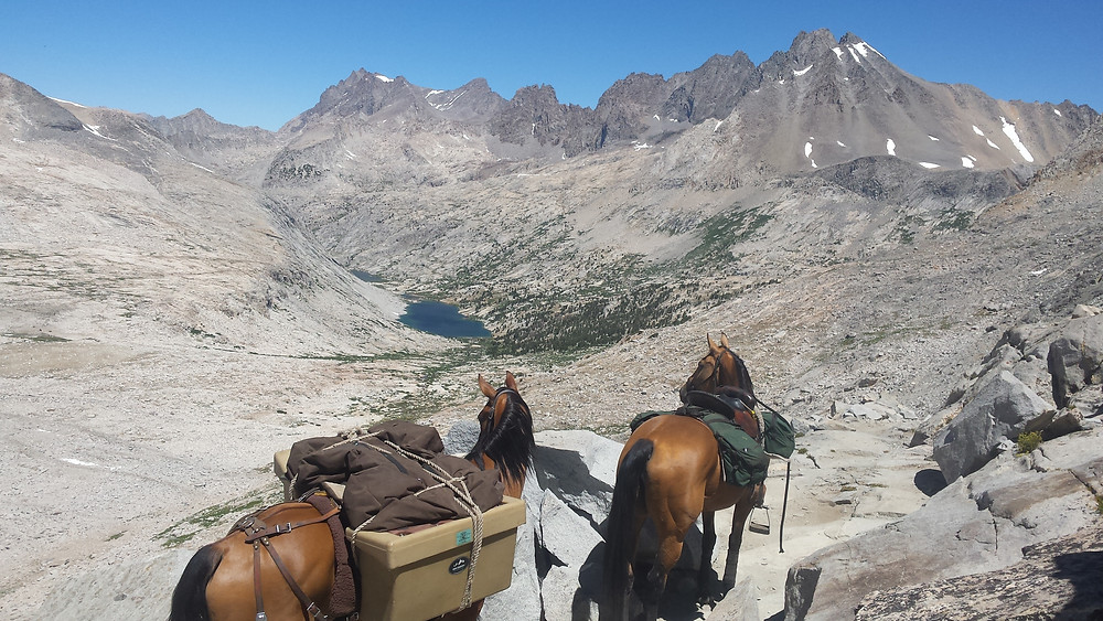 View looking north from Mather Pass