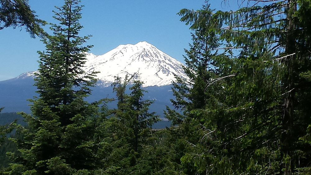 Snow-capped Mt. Shasta near the PCT