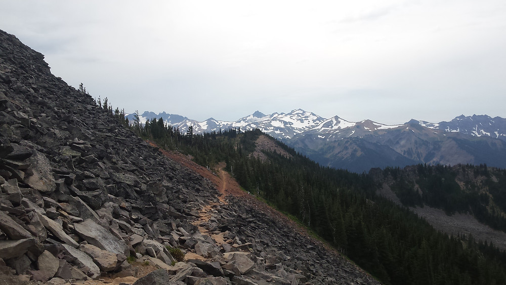 Goat Rocks area, heading toward Knife's Edge