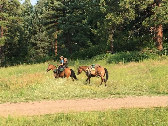 Heading out of Indian Trail horse camp