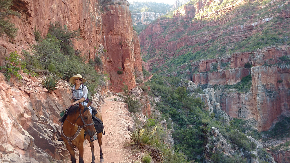 Takoda and my mom riding down into the canyon