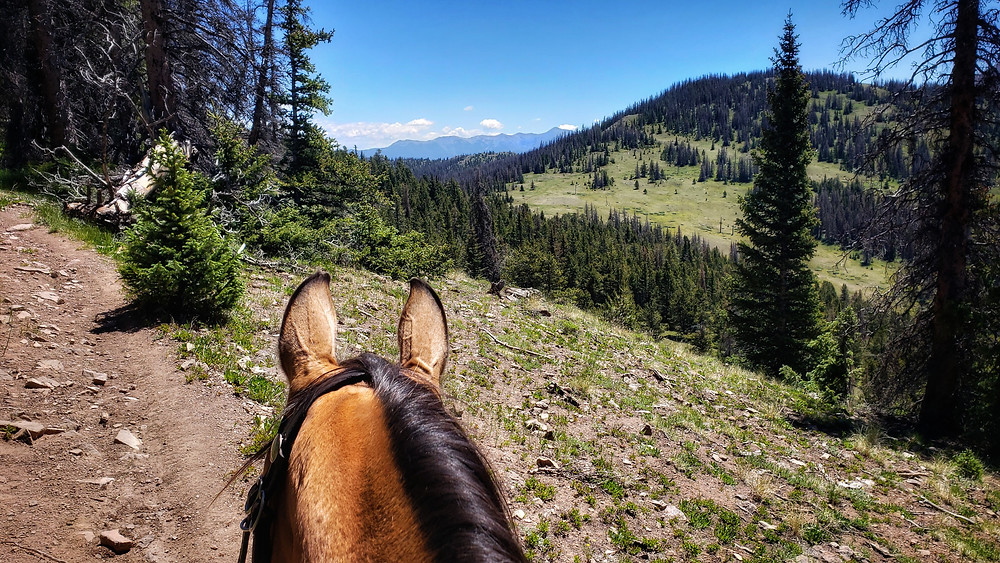 riding out of Marshall Pass area