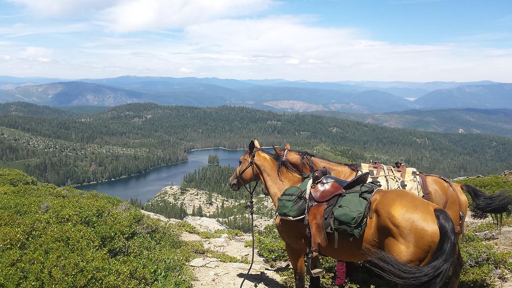 overlooking Buck Lake