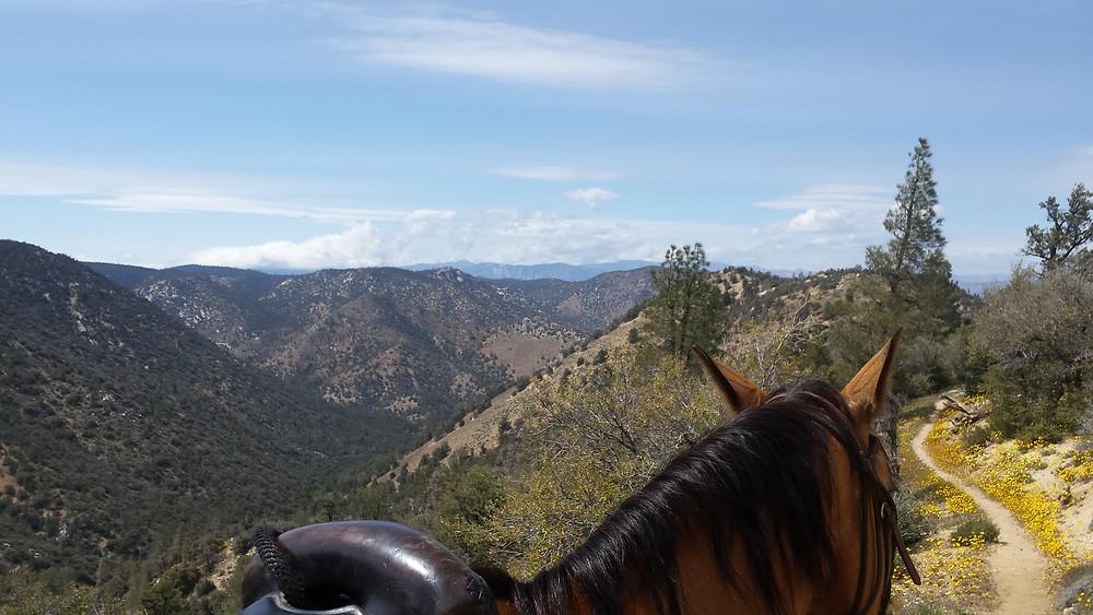 looking back at Bird Spring Pass