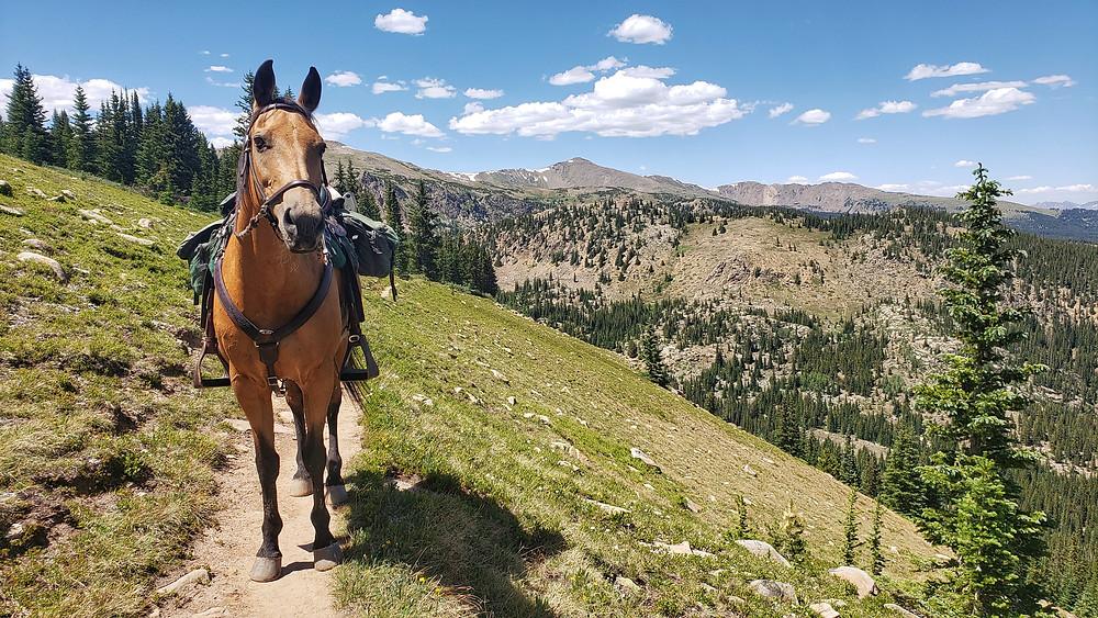 riding south to Mt. Massive trailhead
