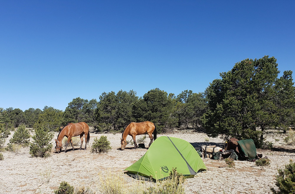 our camp on the night of 5/3