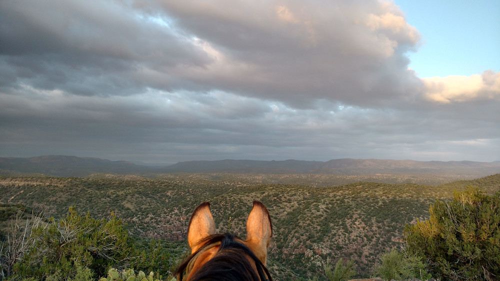 Shyla and the sunset over the AZT