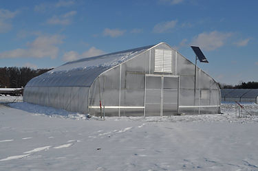 greenhouse snow.jpg