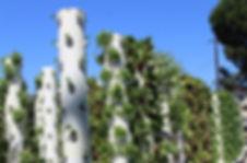 Terrace Foundation 4.jpg