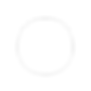 Meknetis_logo_white_transparent.png