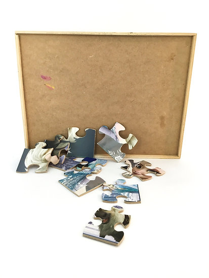 P-026 Multiple Frozen Puzzle in Wood Box