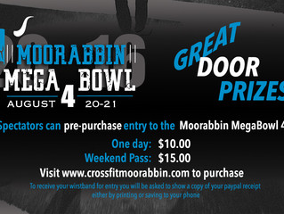 Pre-purchase Spectator entry to the MegaBowl