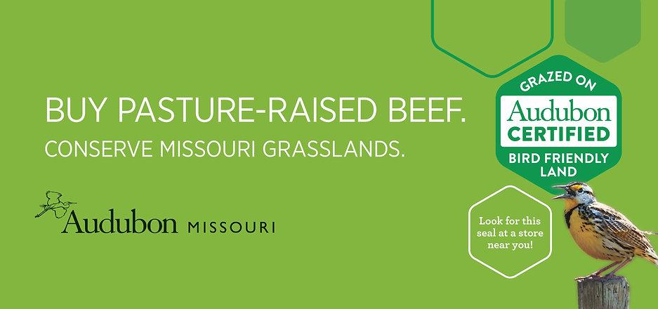 Missouri_57135_1_13-6x6-12_SD_BB_a1-page-003.jpg