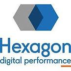 hexagon perf.jpg