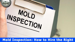 Mold Inspection: How to Hire the Right Professional for Your Home.