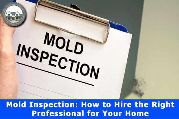 Mold Inspection How to Hire the Right Professional for Your Home