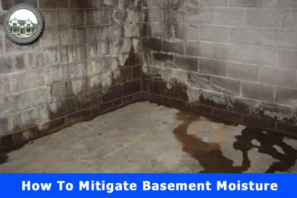 How to Mitigate Basement Moisture