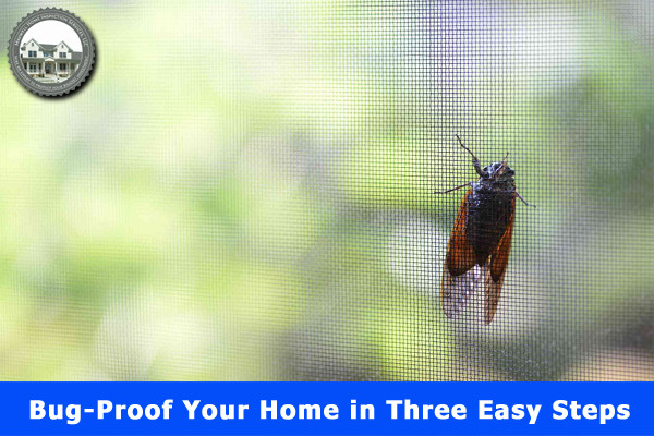 Bug-Proof Your Home in Three Easy Steps