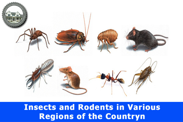 Insects and Rodents in Various Regions of the Country