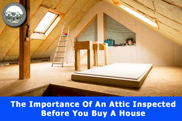 The Importance Of An Attic Inspected Before You Buy A House
