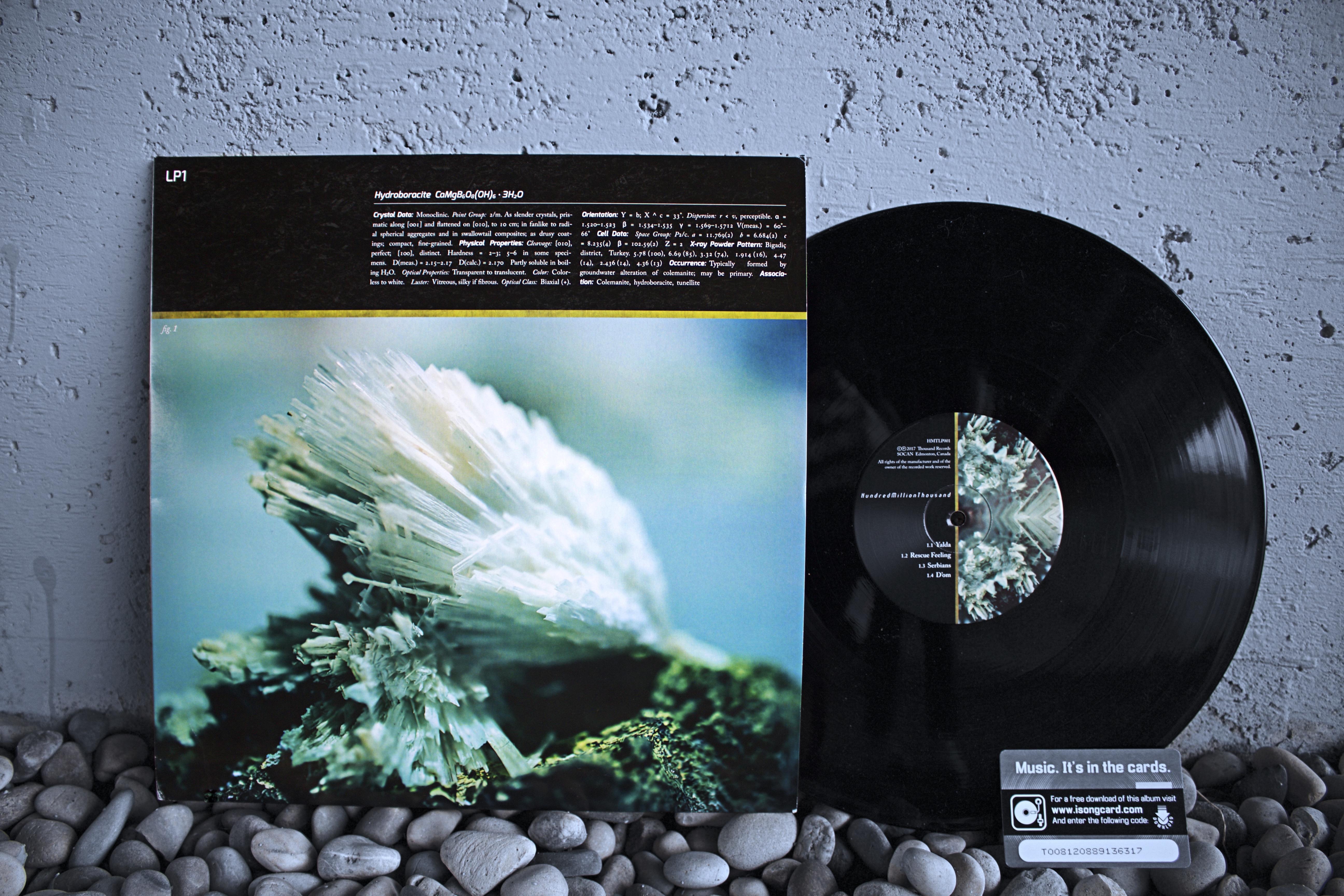 HMT Vinyl 1