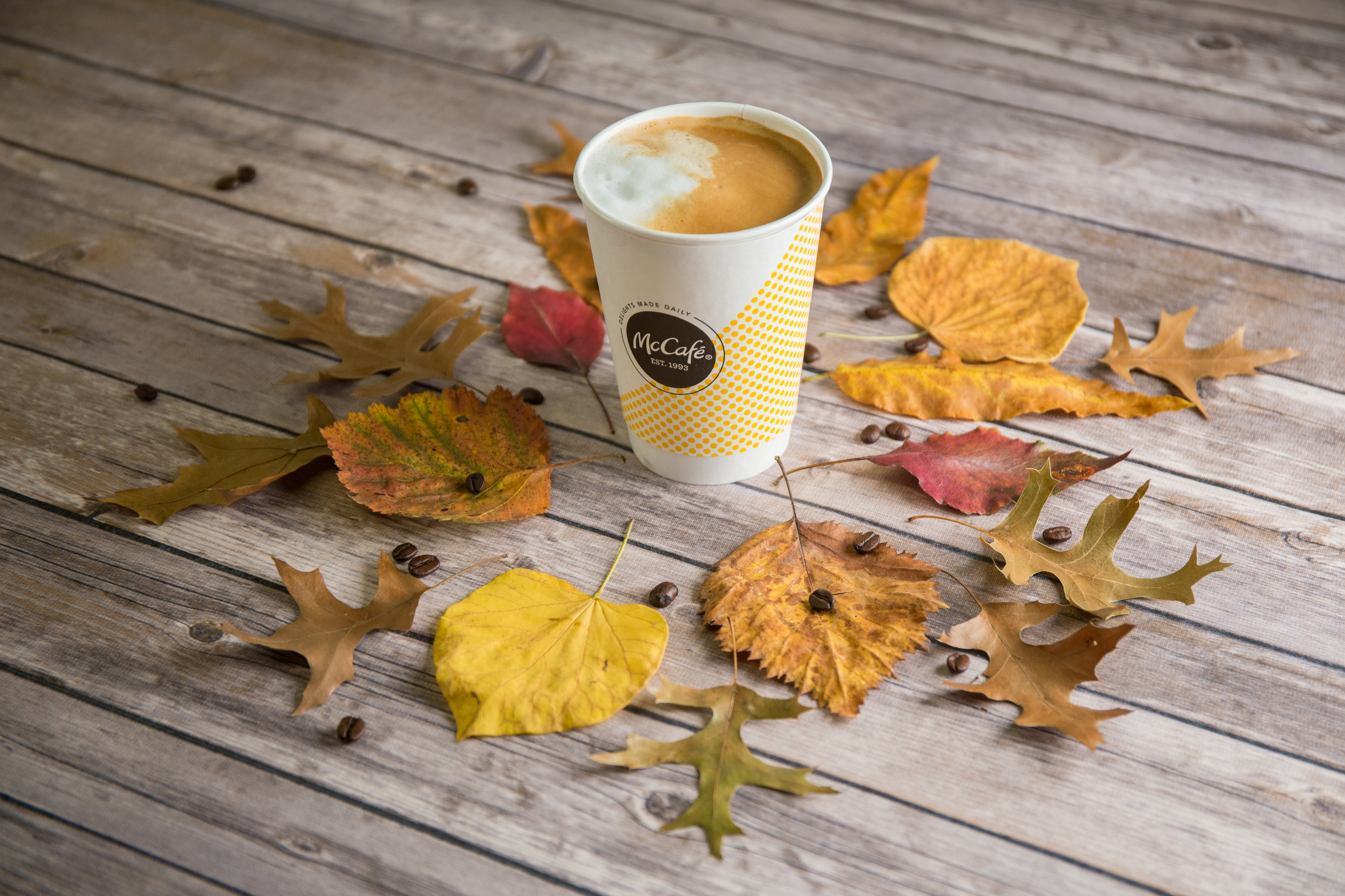 McCafe_Latte_Leaves_v01