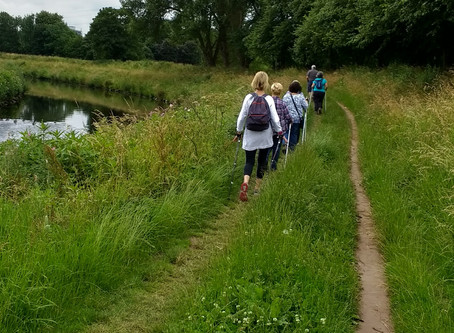 Nordic Walking 'Elevator Pitch'