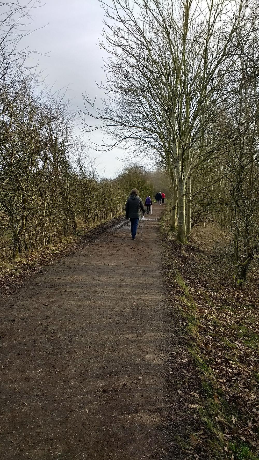 Winter Nordic Walking in Fletcher Moss Park, Didsbury