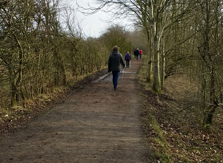 8 Reasons to Keep Nordic Walking in Winter