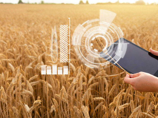 NEW BIOSECURITY HUB FOR GRAINS INDUSTRY