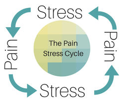 Caught in a pain/stress cycle? Let's get back to the basics!