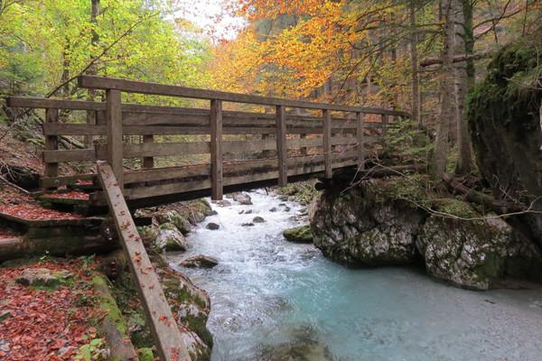 Natur 2.jpg