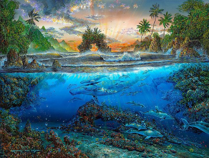 Sunsout - Secret Cove (500)