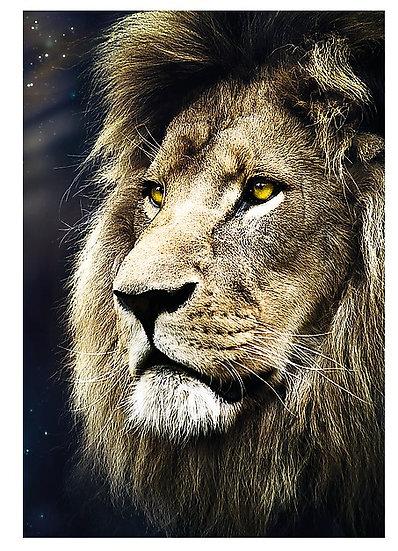 Trefl - Lions Portrait 1500)
