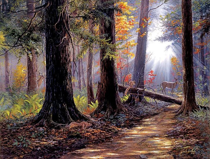 Sunsout - Peaceful Path (500)