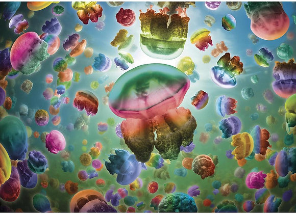 Gibson's - Jellyfish (1000)