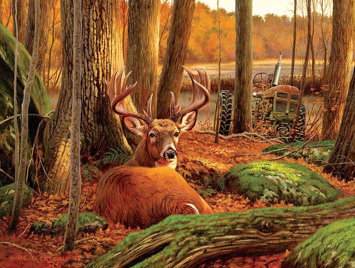 Sunsout - Where Sleeping Deer Lie (1000)