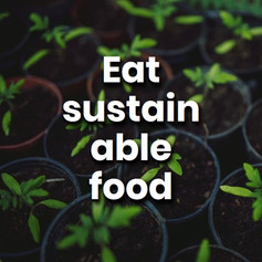 Constant farming of the same crop types will drain nutrients from the soil. Introducing more variety on your plate, and sustainable sourced food is good for the soil.